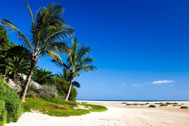 Fuso horário das Ilhas Canárias x Brasil