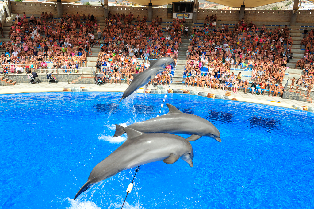 Aqualand Costa Adeje em Tenerife